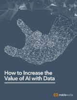 How Enriched Data Can Make AI and Your Organization Smarter